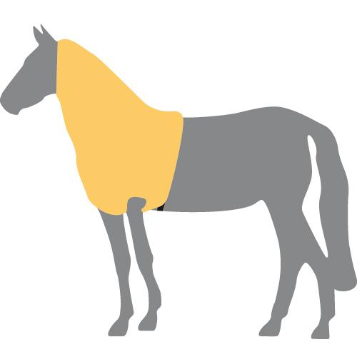 Decken vom lässt frau sich pferd frau lässt